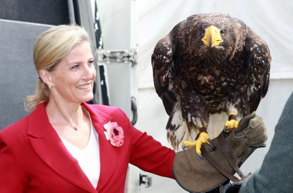York Press: Sophie, Countess of Wessex meets Camilla the Stellar Sea Eagle at the show