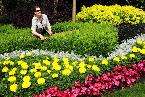 COLOURFUL: Alison Pringle in York's Museum Gardens ahead of today's Yorkshire In Bloom inspection