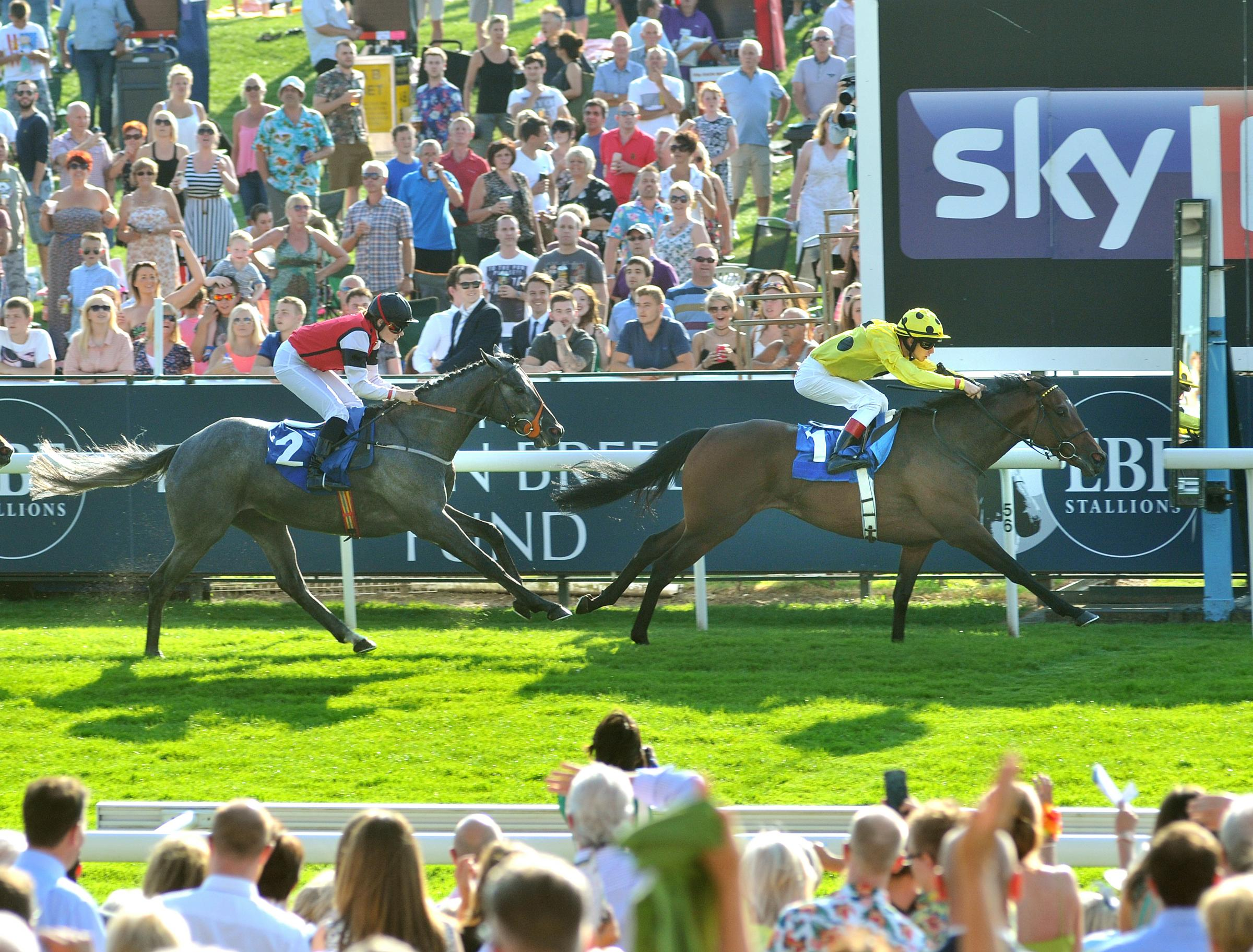 Anderiego makes a winning return to York Racecourse
