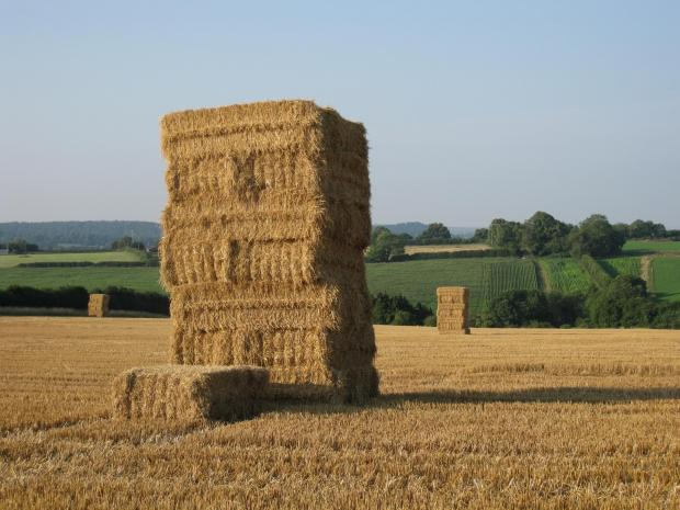 Hay bales at risk of fire as heatwave continues