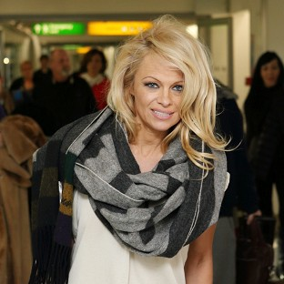 Pamela Anderson has called for a whale drive in the Faeroe Islands to stop