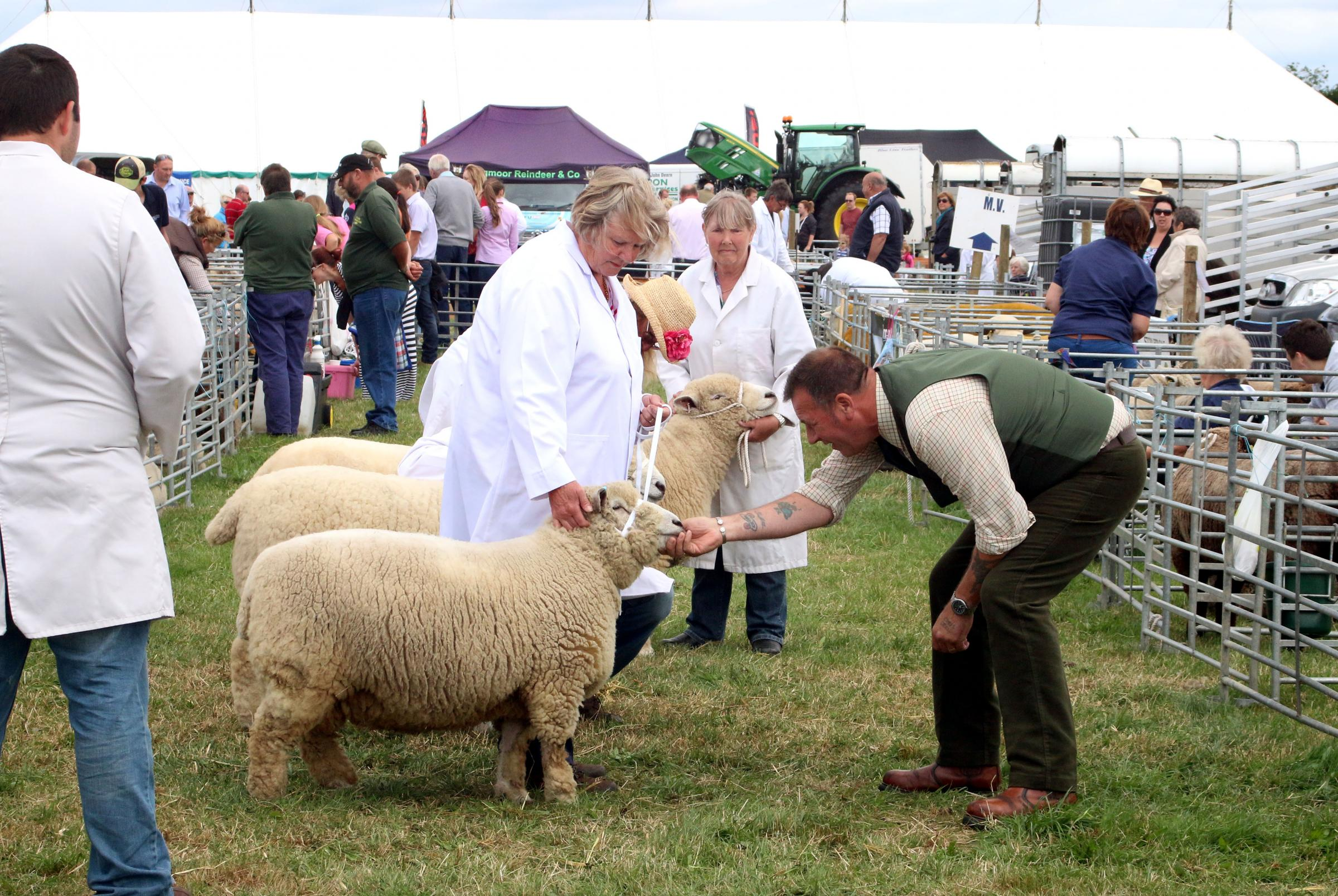 Thousands turn out for Tockwith Show