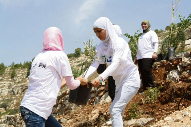 International Service volunteers are pictured working to build a community garden in Palestine