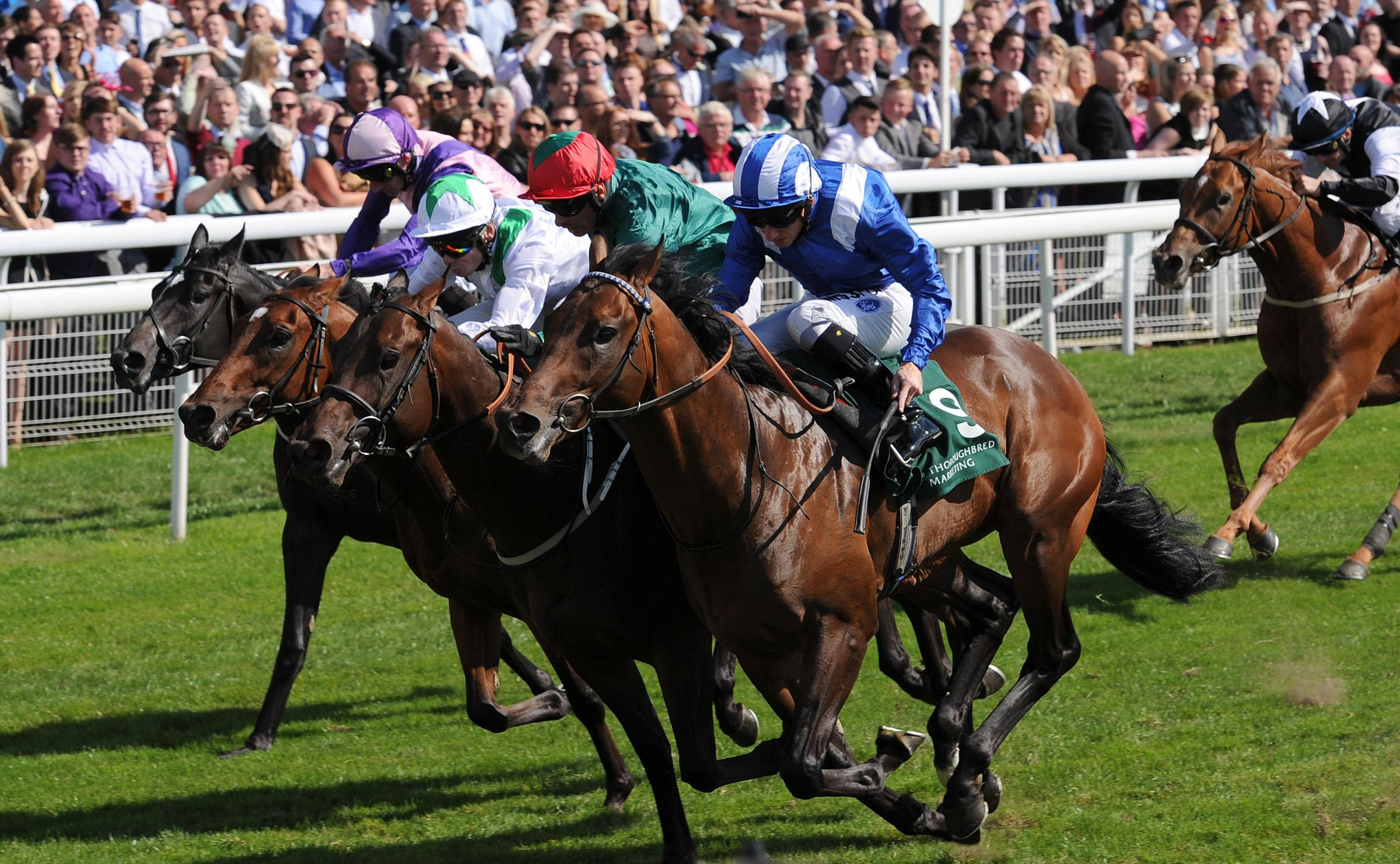 Paul Hanagan rides Muhaarar to Gimcrack Stakes victory
