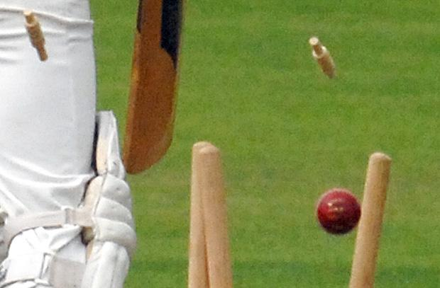Senior Cricket League: Division three north round-up