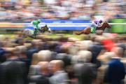 BEST IN THE WORLD: The Juddmonte International, pictured being won in 2014 by Australia, is the best race on the planet