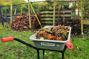 Catching up with the compost