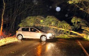 York Press: Heavy winds cause trees to fall on North Yorkshire roads