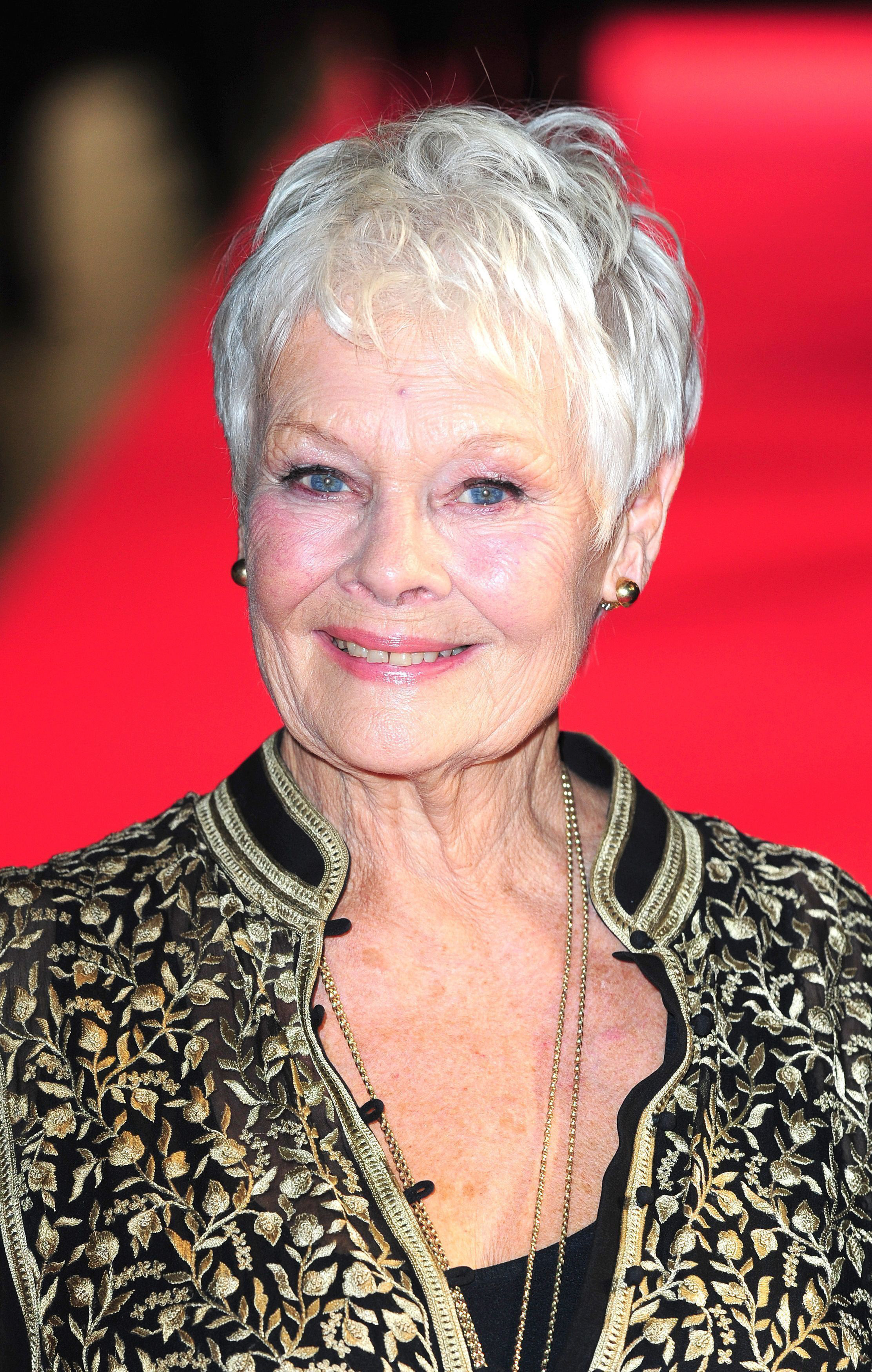 Surprising The Mount School Welcomes Judi Dench Clarification From York Press Hairstyle Inspiration Daily Dogsangcom