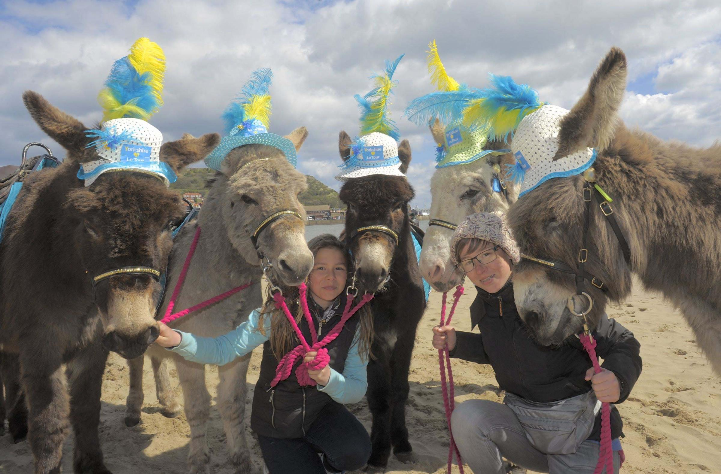 Lucy Butterfield and Ellis Floyd, in hat, with the Scarborough donkeys as they prepare for the arrival of a different kind of rider when the inaugural Tour de Yorkshire arrives