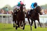 DUEL: Snow Sky, left, holds off Brown Panther to win the Betway Yorkshire Cup