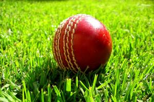 Pilmoor Evening Cricket: Sessay stay in charge at the summit
