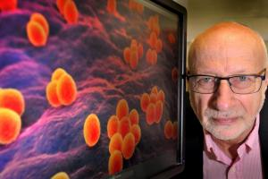 Why we should be worried about the rise of antibiotic-resistant superbugs - and what a York-based charity is doing to fight back...