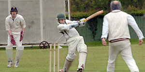 York & District Senior League cricket