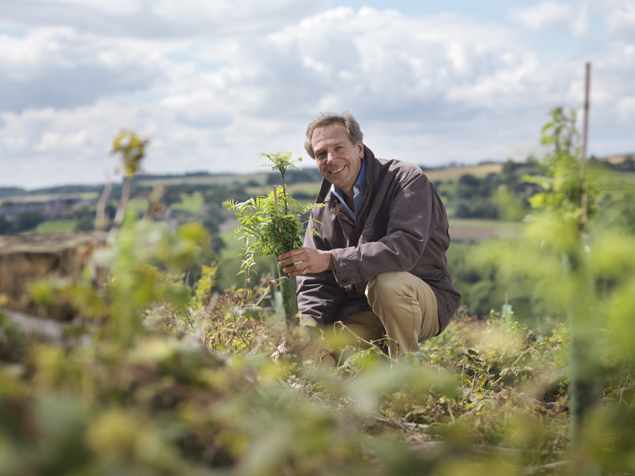 "Sir William Worsley, who has been appointed ""tree champion"" to drive Government's planting scheme"