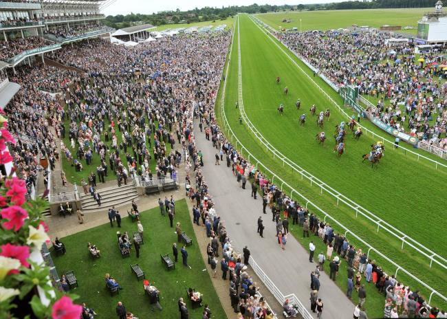 York Races on Saturday. Picture David Harrison..