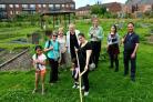 The Greenfields Community Garden on Haxby Road    Picture: Frank Dwyer