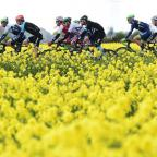 York Press: The peloton makes it way through the Yorkshire countryside during last year's Tour de Yorkshire. Picture: Alex Broadway/SWpix.com