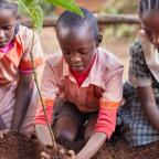 York Press: Kenyan school children planting a tree as part of Bettys & Taylors Trees for Life project work in Kenya. Picture by Jonathan Gregson.