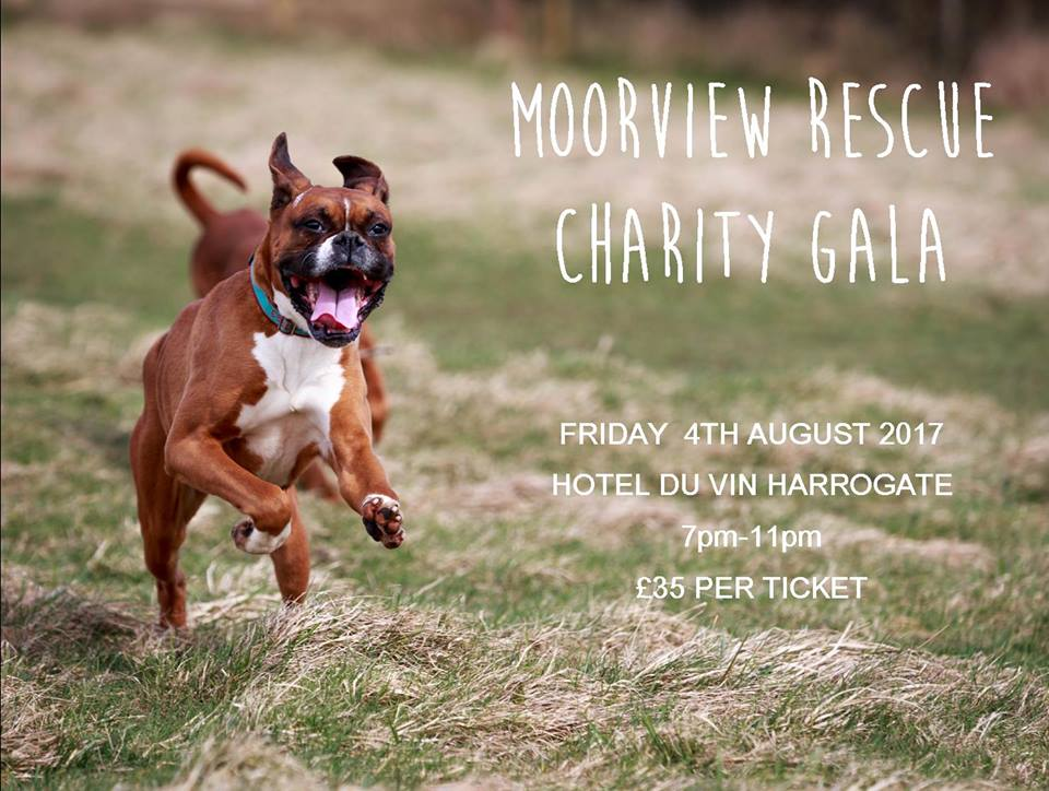Moorview Rescue Charity Gala