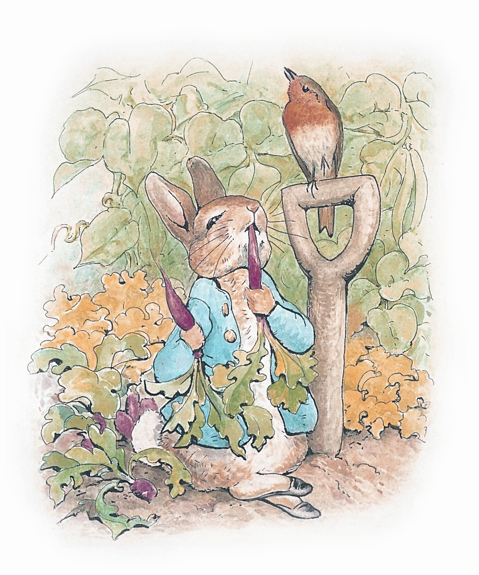 Peter Rabbit..