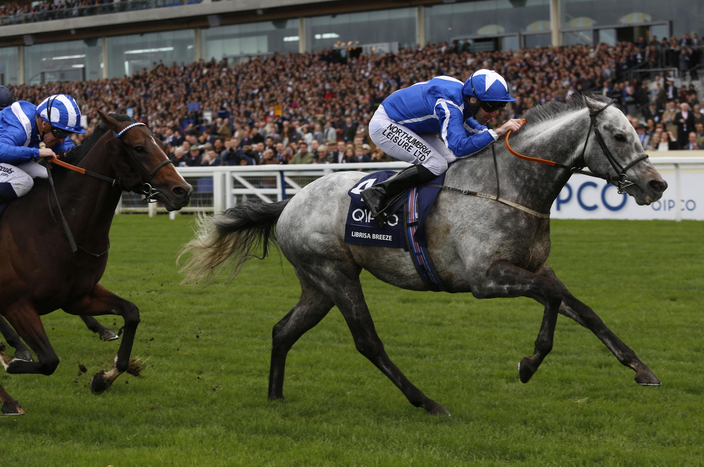 Robert Winston rides Librisa Breeze to victory in the QIPCO British Champions Sprint Stakes at Ascot – Picture: Julian Herbert/PA Wire