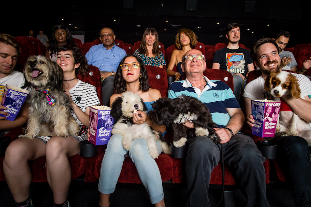 PET PARTY: A dog-friendly screening is to be staged at City Screen