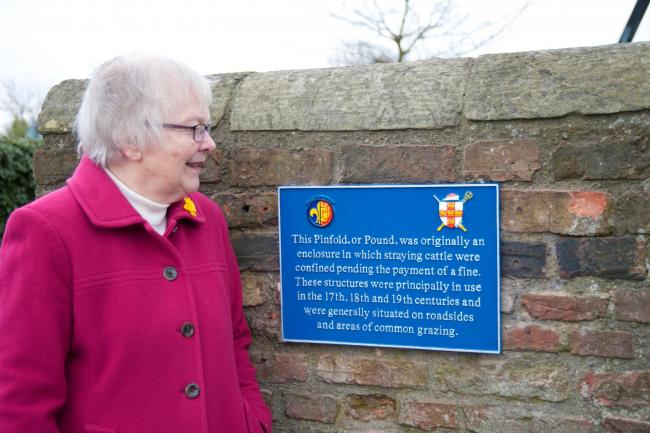 Dinah Tyszka, one of the York Civic Trust's team of historians, beside the plaque to the Dringhouses Pinfold. Photo: York Civic Trust