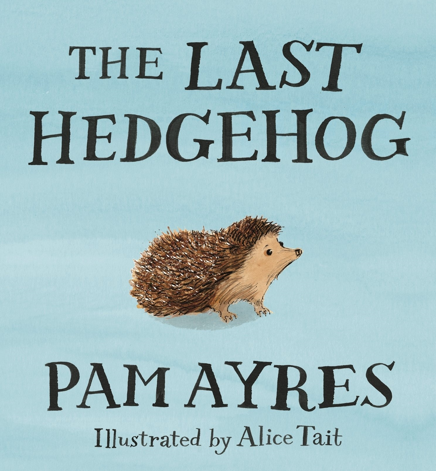 How To Make A Book Hedgehog ~ Little apple book of the week the last hedgehog by pam ayres