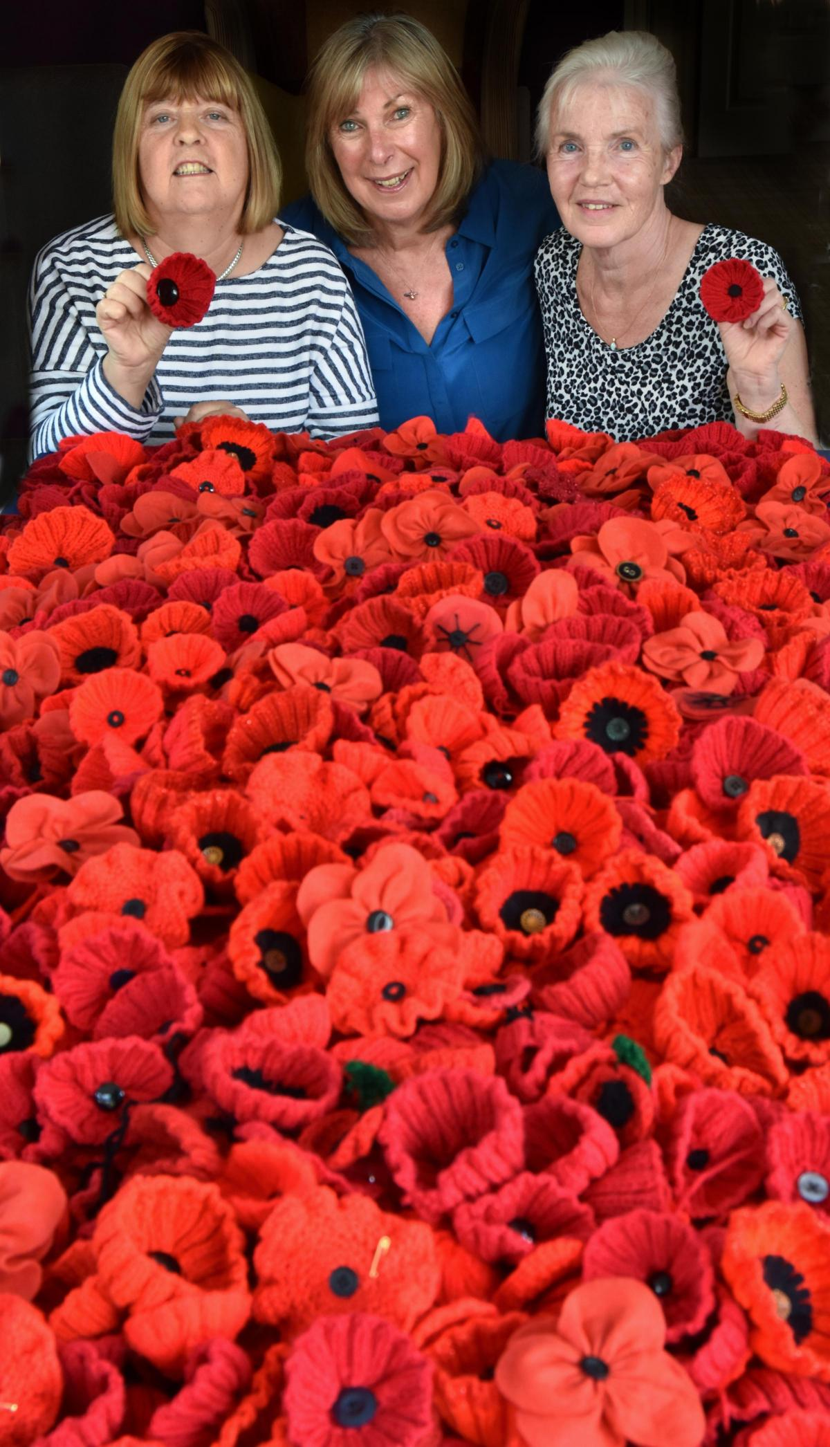 3000 Poppies Collected For All Saints Armistice Art Project York