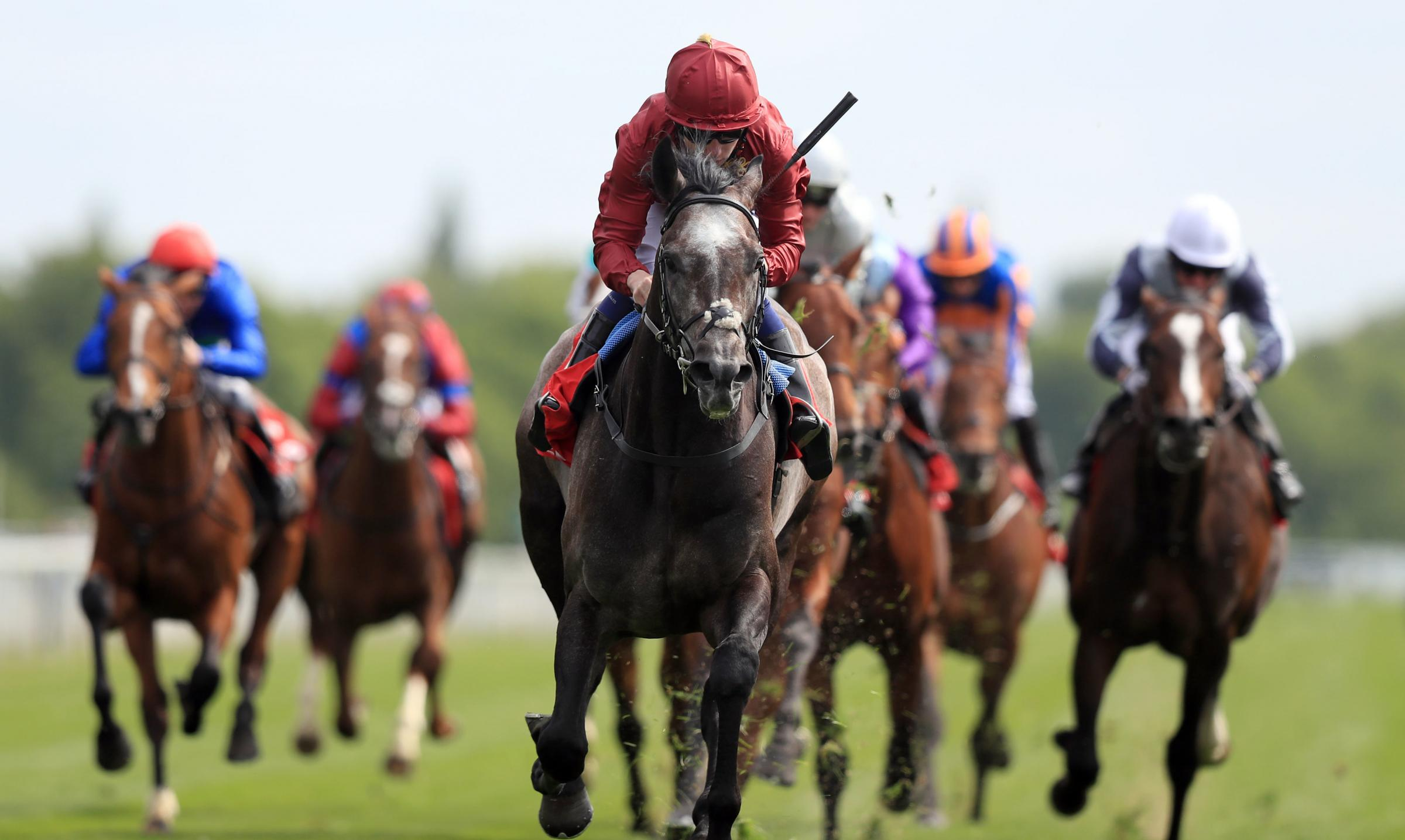 ROARING SUCCESS: York's Dante Stakes will be sponsored by Al Basti in 2019 with Roaring Lion pictured winning this year's race