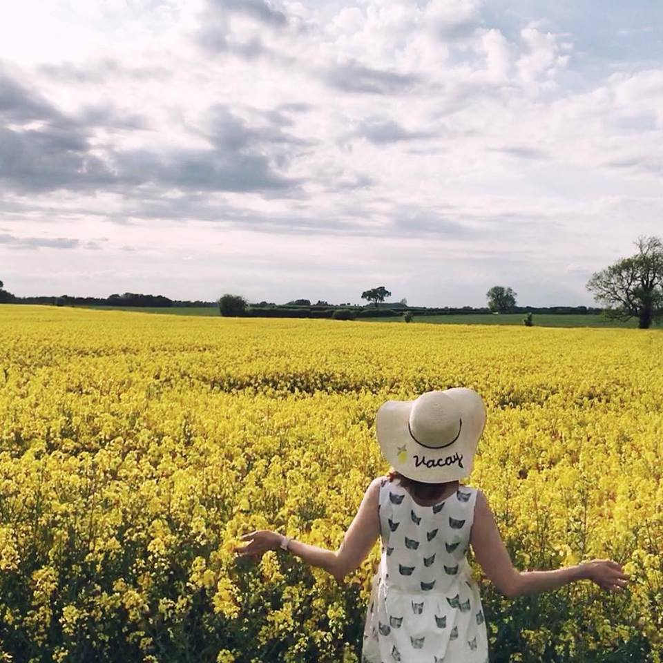 "Alexa Cobbold took this picture of ""beautiful golden fields in Yorkshire"""