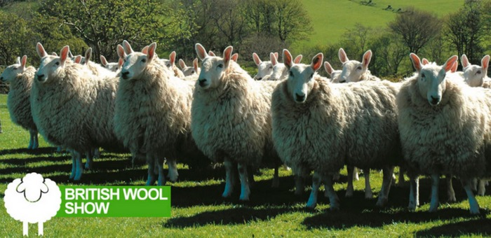 The British Wool Show takes place at York Auction Centre, Murton, on Saturday