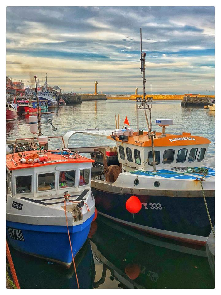 Michelle Sorrell took this picture at Whitby