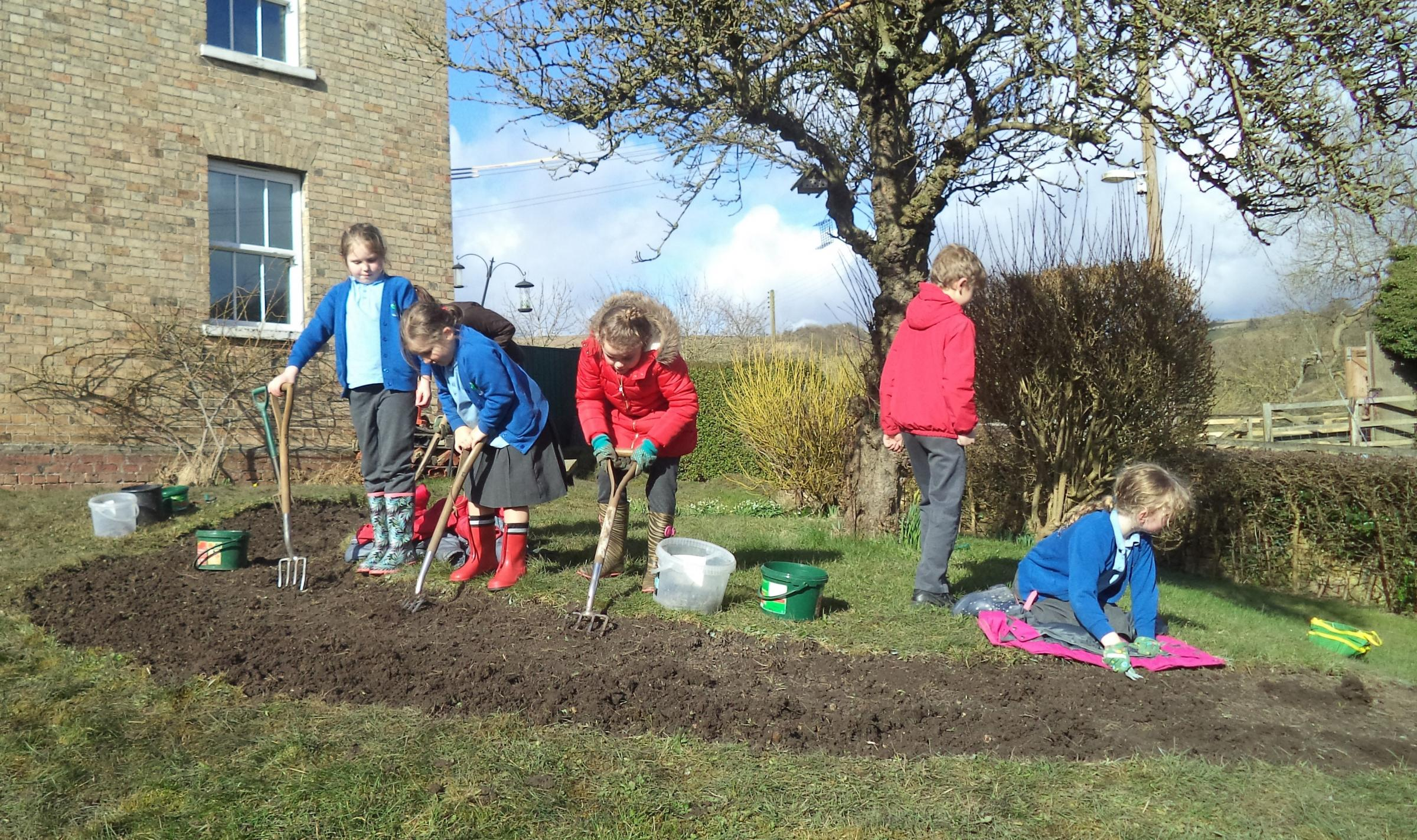 Children at Bishop Wilton primary school get stuck in creating a welcoming environment for pollinating insects