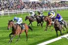 York Races. The 4th race the 3.55pm Unibet Stakes. Picture David Harrison..