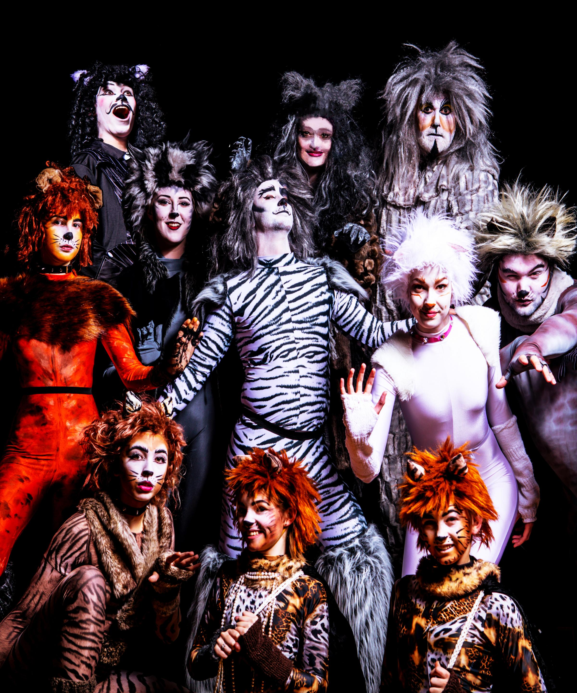 Pick Me Up Theatre in Cats