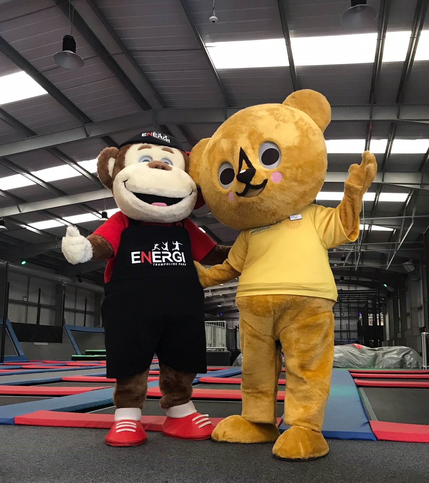 Enzo the Energi mascot with Lenny Bear the hospice mascot at Energi Trampoline Park