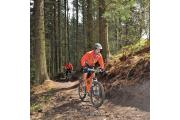 A cyclist pictured on another occasion in Dalby Forest