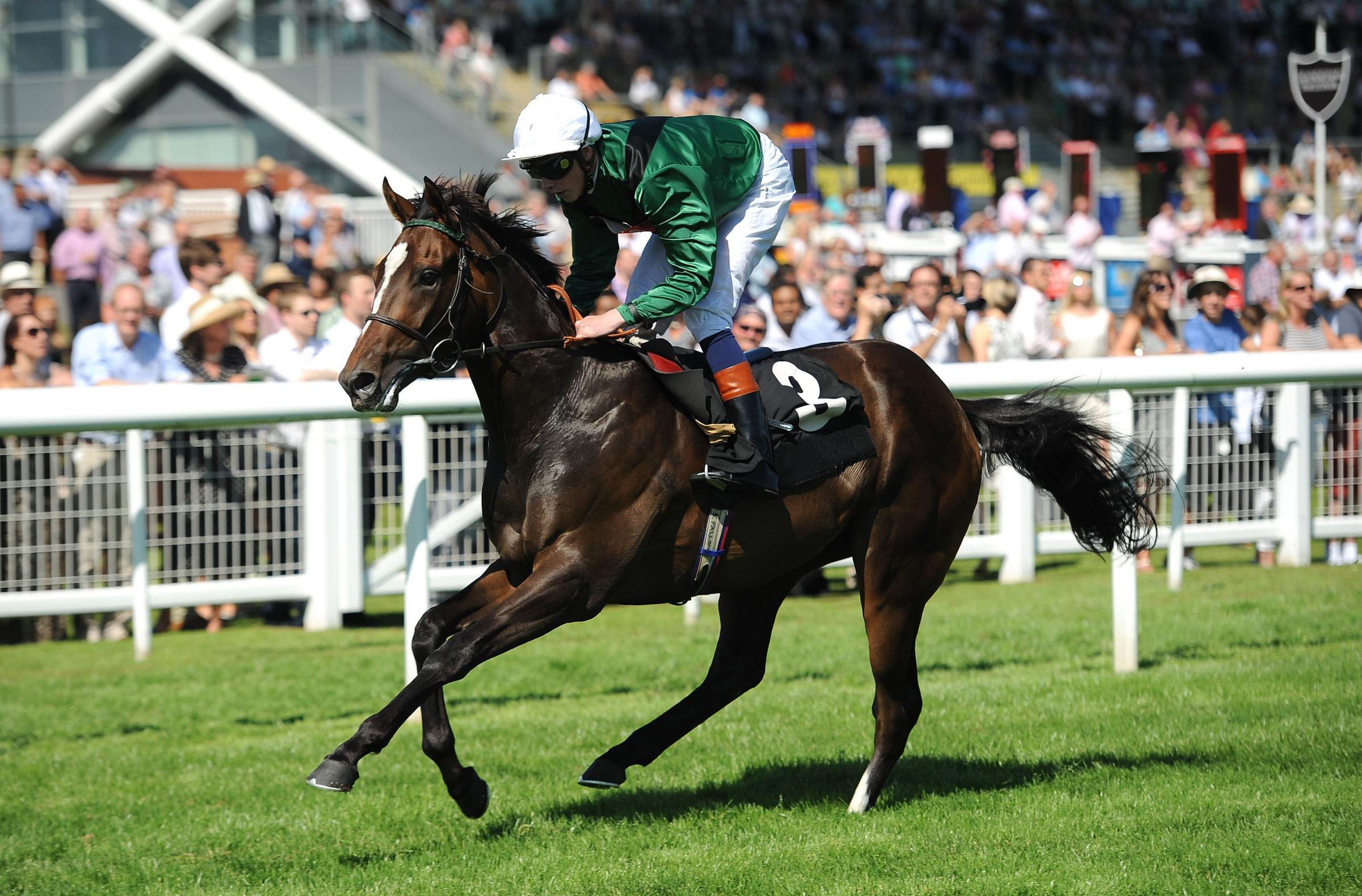 GOOD GROUND WANTED: Limato, pictured winning at Newbury, remains under consideration for the Duke Of York Clipper Logistics Stakes, the £165,000 sprint feature on the opening day of York Racecourse's new season on Wednesday. Picture: Andrew Ma
