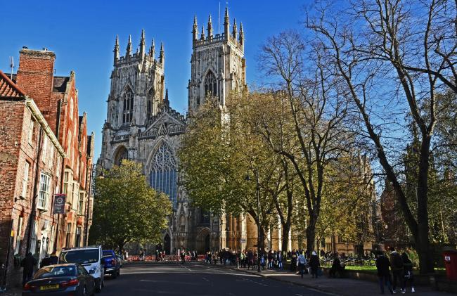 Leave the plane tree in front of York Minster alone, please, says Rachel Semlyen. picture: Nigel Holland.
